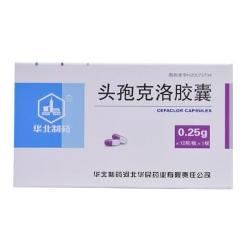 华北制药 头孢克洛胶囊 0.25g*12粒*1板【Y】