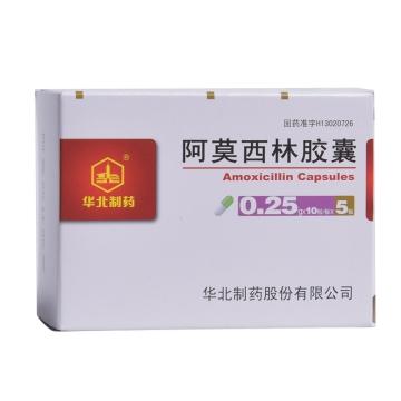 华北制药 阿莫西林胶囊 0.25g*10粒*5板【Y】