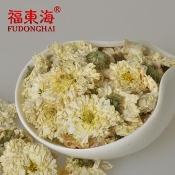 福东海 安徽黄山贡菊花茶50g