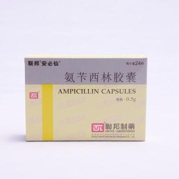 联邦 氨苄西林胶囊 0.5g*24粒