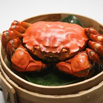 正宗阳澄湖大闸蟹螃蟹799型公蟹180-195克/4只母蟹130-135克/4只